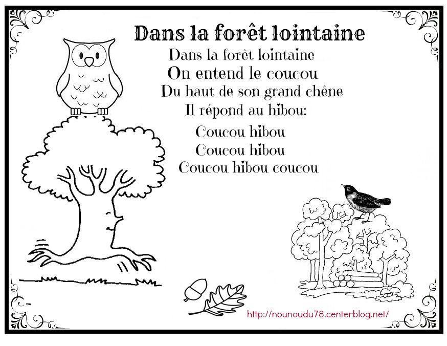 Dans La Forêt Lointaine Illustrée